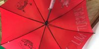 Volim Turopolje – oslikani kišobrani u knjižnici