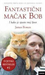 Fantastični mačak Bob