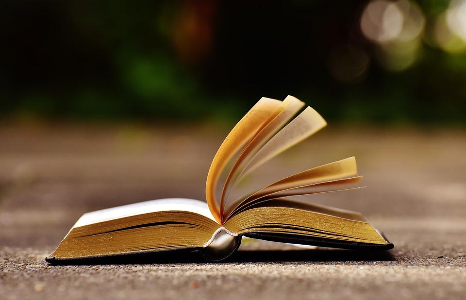 Draga knjiga – foto natječaj – neka bude bolja od ove