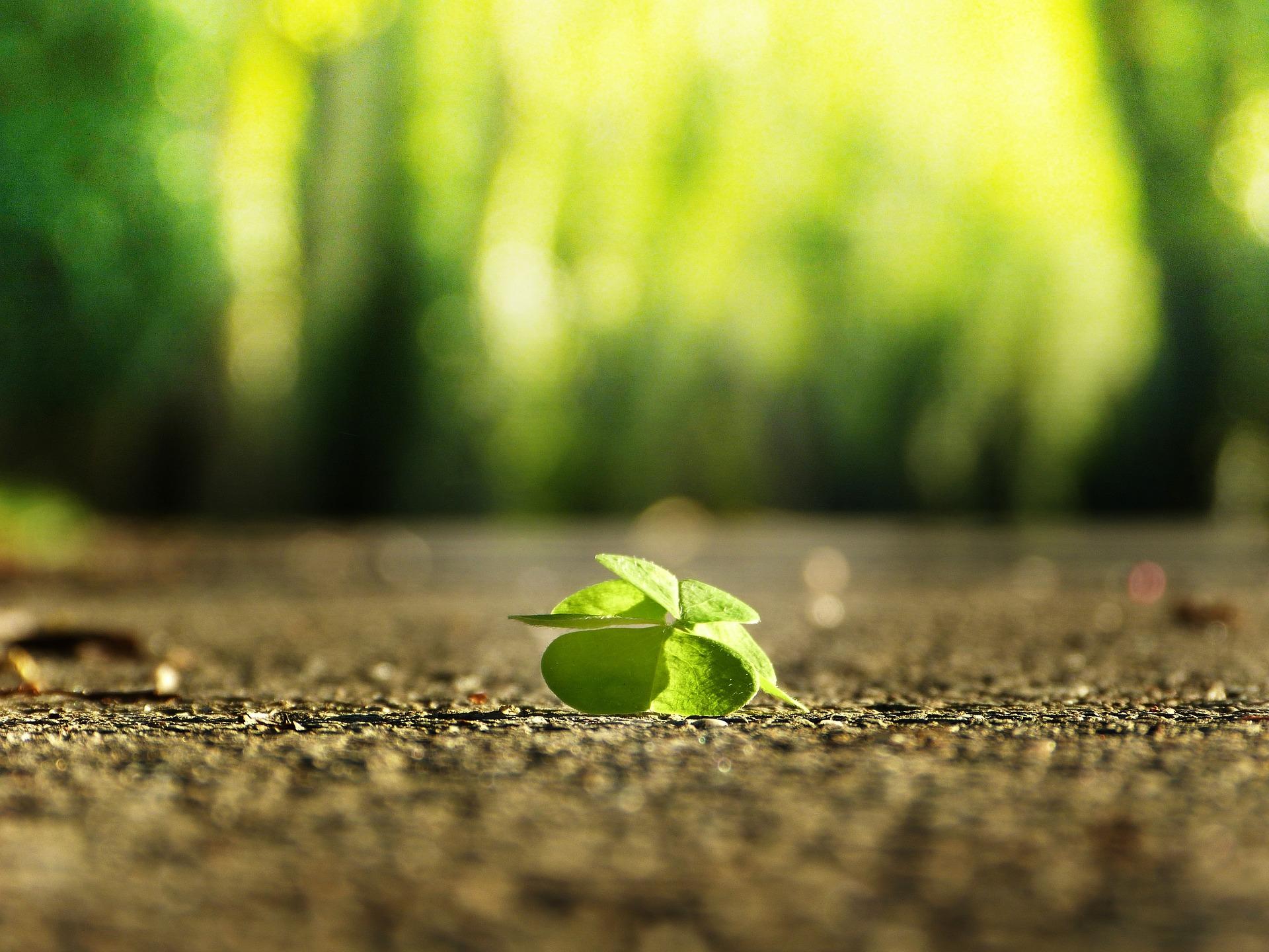 Unaprijedite svoj optimizam